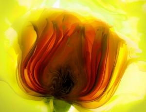 fleuri 012